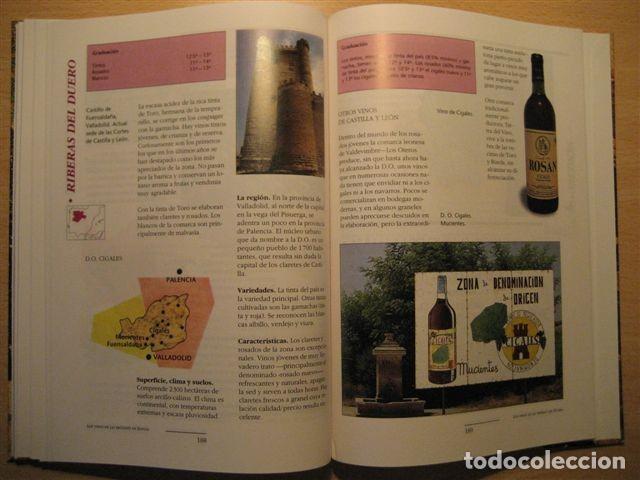 Libros: LIBRO SOBRE LOS VINOS DE ESPAÑA (Pedro Plasencia - Teclo Villalón) - Foto 4 - 135664299