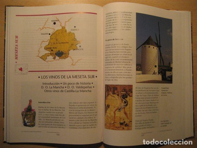 Libros: LIBRO SOBRE LOS VINOS DE ESPAÑA (Pedro Plasencia - Teclo Villalón) - Foto 6 - 135664299