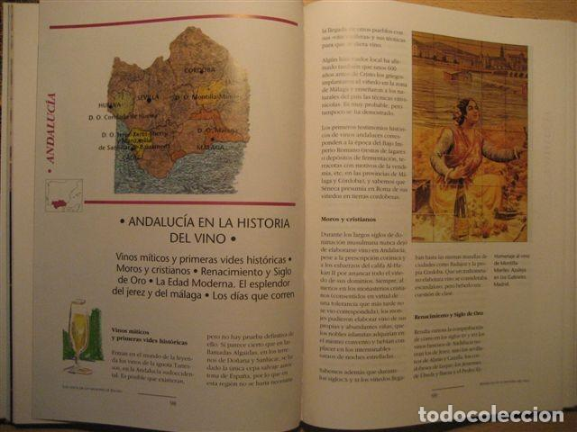 Libros: LIBRO SOBRE LOS VINOS DE ESPAÑA (Pedro Plasencia - Teclo Villalón) - Foto 7 - 135664299