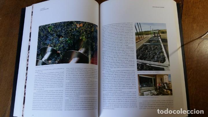 Libros: La Rioja, sus viñas y su vino. 1ª Edición - Logroño, Gobierno de la Rioja 2009 - Foto 3 - 153724806