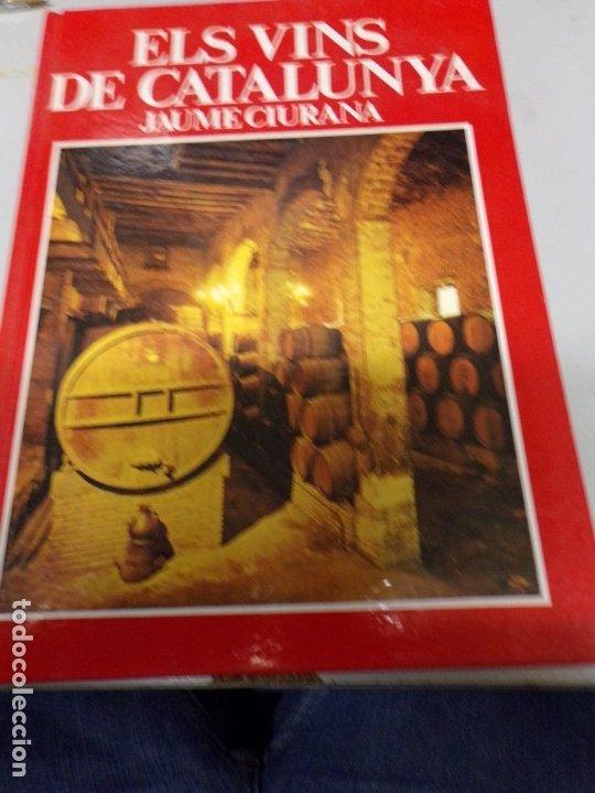 ELS VINS DE CATALUNYA; JAUME CIURANA - GENERALITAT DE CATALUNYA 1980 (Libros Nuevos - Ocio - Vinos)