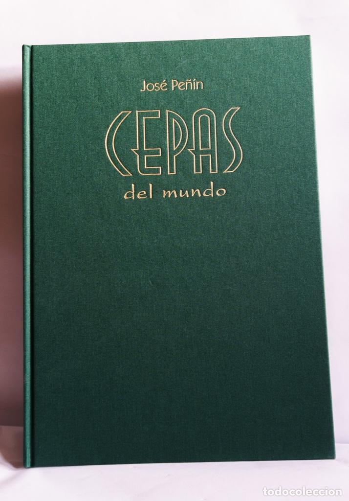 Libros: Cepas del mundo - Foto 2 - 210359841