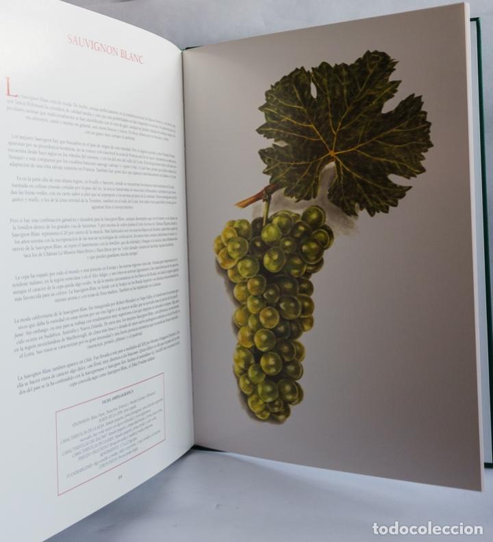 Libros: Cepas del mundo - Foto 4 - 210359841