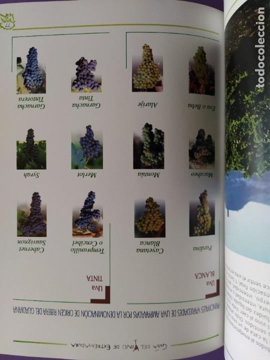 Libros: GUIA DEL VINO DE EXTREMADURA. 343 PAGINAS. CON ILUSTRACIONES. 2004. - Foto 22 - 222166482