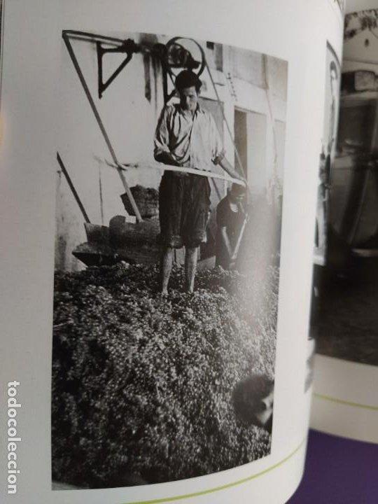 Libros: GUIA DEL VINO DE EXTREMADURA. 343 PAGINAS. CON ILUSTRACIONES. 2004. - Foto 25 - 222166482
