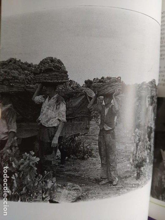 Libros: GUIA DEL VINO DE EXTREMADURA. 343 PAGINAS. CON ILUSTRACIONES. 2004. - Foto 26 - 222166482