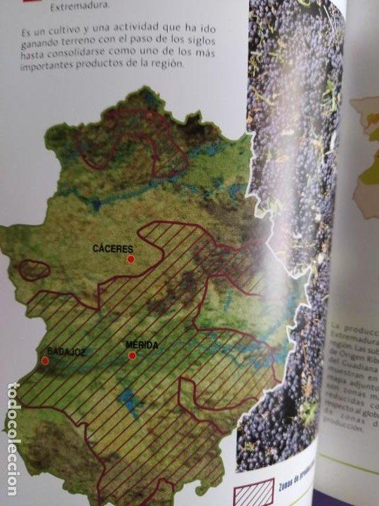 Libros: GUIA DEL VINO DE EXTREMADURA. 343 PAGINAS. CON ILUSTRACIONES. 2004. - Foto 28 - 222166482