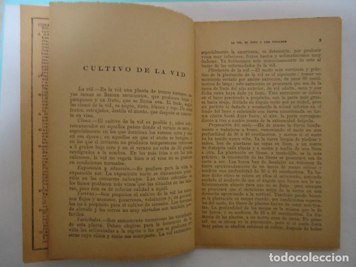 Libros: LIBRO DE LA VID , EL VINO Y LOS VINAGRES. DE ANTONIO BAEZA. EDICIONES IBERICA - Foto 2 - 225149480