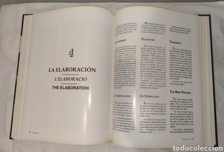 Libros: Libro - Penedès, el vi - P&R comunicacions - 1995 - EDICIONS I COMUNICACIÓ. Tapa dura, 168 págs - Foto 6 - 241039125