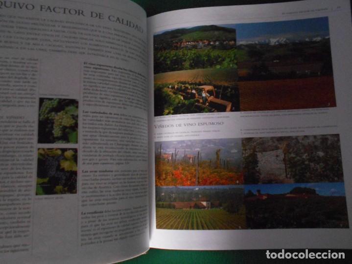 Libros: ATLAS ILUSTRADO EL CHAMPAN Y EL CAVA Y OTROS VINOS ESPUMOSOS SUSAETA - Foto 5 - 289630978