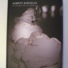 Libros: CATALOGO IVAM: ALBERTO BAÑUELOS - LA LITURGIA DE LAS PIEDRAS 2009 (TAPA DURA). Lote 23022026