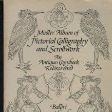 Libros: MASTER ALBUM OF PICTORIAL CALLIGRAPHY AND SCROLLWORK, BALDRI VAN HORICKE, DOVER, NEW YORK, 52 PÁGS. Lote 34934723