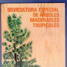 Libros: SILVICULTURA ESPECIAL DE ARBOLES MADERABLES TROPICALES. A. BETANCOURT BARROSO. LA HABANA. 1983.. Lote 39946015