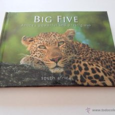 Libros: THE BIG FIVE OF SOUTH AFRICA. AFRICA'S POWERFUL AND PRESTIGIOUS. Lote 54158507