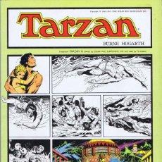 Libros: TARZÁN. TOMO 5 - HOGARTH, BURNE; FOSTER, HAL. Lote 54175065