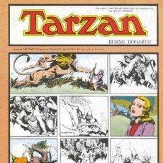 Libros: TARZÁN. TOMO 7 - HOGARTH, BURNE; FOSTER, HAL. Lote 54175067