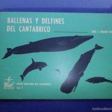 Libros: CURIOSO LIBRO BALLENAS Y DELFINES DEL CANTÁBRICO 1981 MUSEO MARITIMO CANTABRICO SANTANDER. Lote 58098677