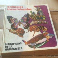Libros: ANTIGUO LIBRO ANIMALES INVERTEBRADOS MARAVILLAS DE LA NATURALEZA AÑO 1968 SALVAT S.A. EDICIONES . Lote 58301177
