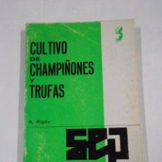 Libri di seconda mano: CULTIVO DE CHAMPIÑONES Y TRUFAS. ALEJO RIGAU. TDK297 -. Lote 59440120
