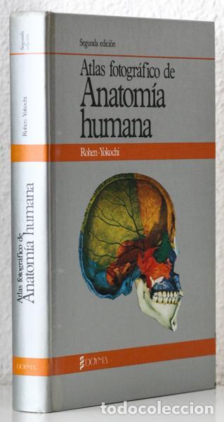 ATLAS FOTOGRAFICO DE ANATOMIA HUMANA ROHEN YOKOCHI PDF