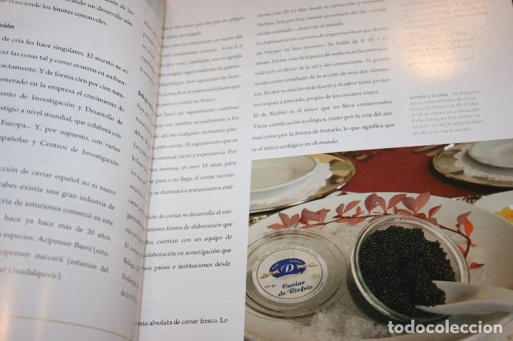 Libros: Lujos de España. cien empresas de prestigio reconocidas internacionalmente.2006-415 páginas - Foto 8 - 91849990