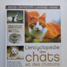 Libros: L´ENCYCLOPÉDIE DES CHATS ET DES CHATONS - 2011. Lote 93164775