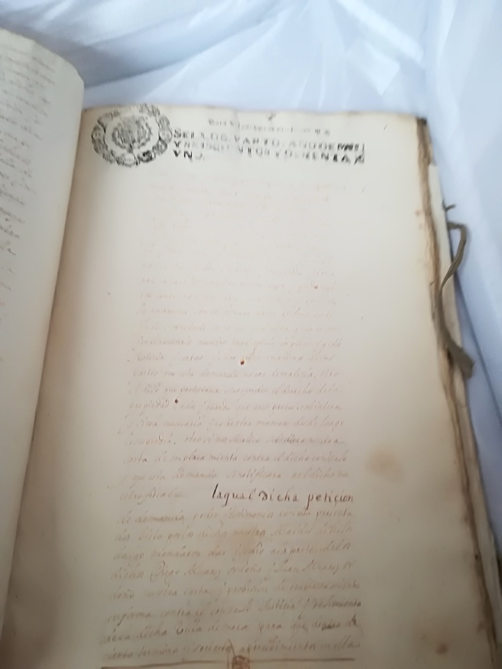 Libros: Carta Ejecutoria de los hermanos Diego y Juan Alvarez Ordoñez, y otros papeles genealógicos de los A - Foto 3 - 108856500