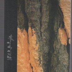 Libros: OMAKO BASOA. EL BOSQUE DE OMA - IBARROLA, AGUSTÍN / IBARROLA, NAIEL / CHAGAL, MARC / LEJARZA, JAVIER. Lote 109725830