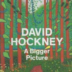 Libros: A BIGGER PICTURE - HOCKNEY, DAVID. Lote 109725842