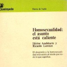 Libros: HOMOSEXUALIDAD: EL ASUNTO ESTÁ CALIENTE - ANABITARTE RIVAS, HÉCTOR. Lote 112588330