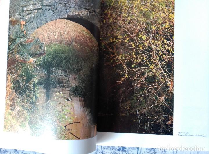 Libros: EL ROMANICO EN TORNO AL CAMINO DE SANTIAGO EN CASTILLA Y LEON - Foto 3 - 117513203