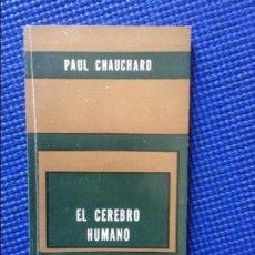Libros: EL CEREBRO HUMANO PAUL CHAUCHARD. Lote 118055735