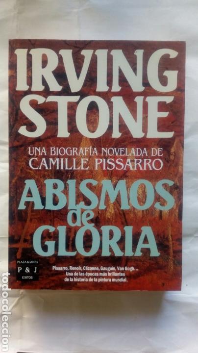 ABISMOS DE GLORIA. IRVING STONE. (Libros sin clasificar)