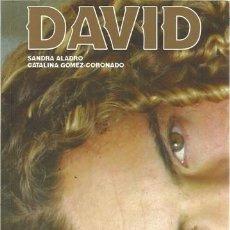 Libros: DAVID BISBAL- SANDRA ALADO Y CATALINA GOMEZ CORONADO. Lote 128164507