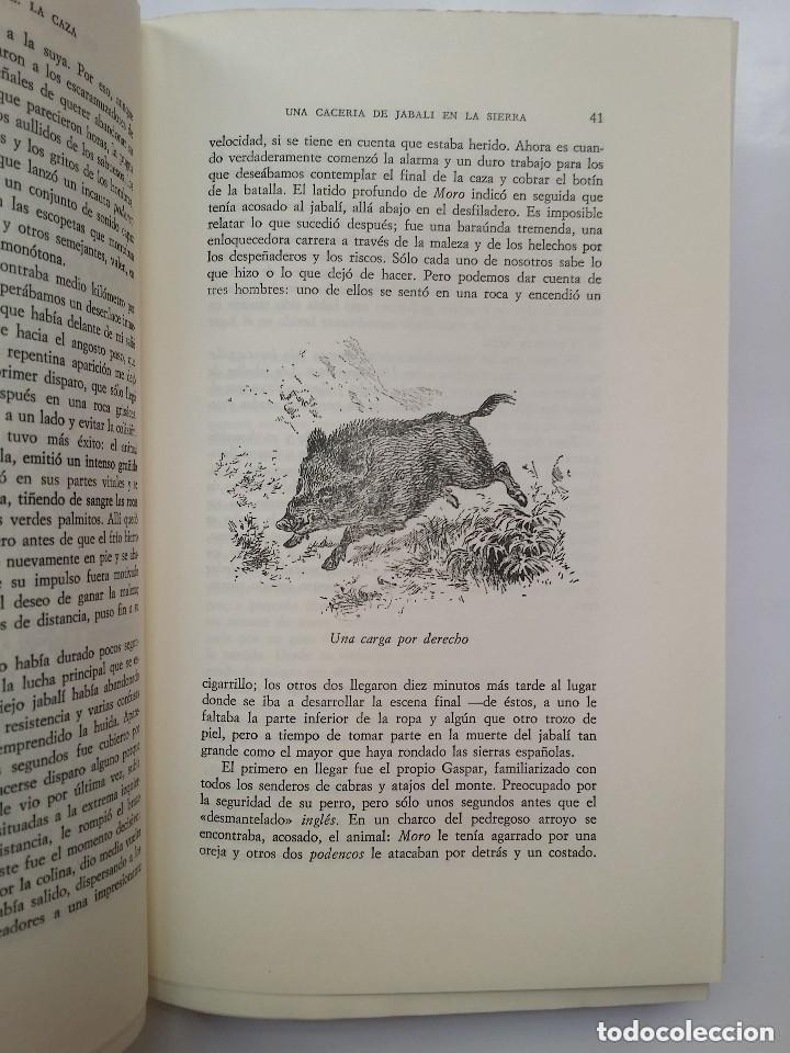 Libros: La España Agreste o Inexplorada - Foto 3 - 131567535
