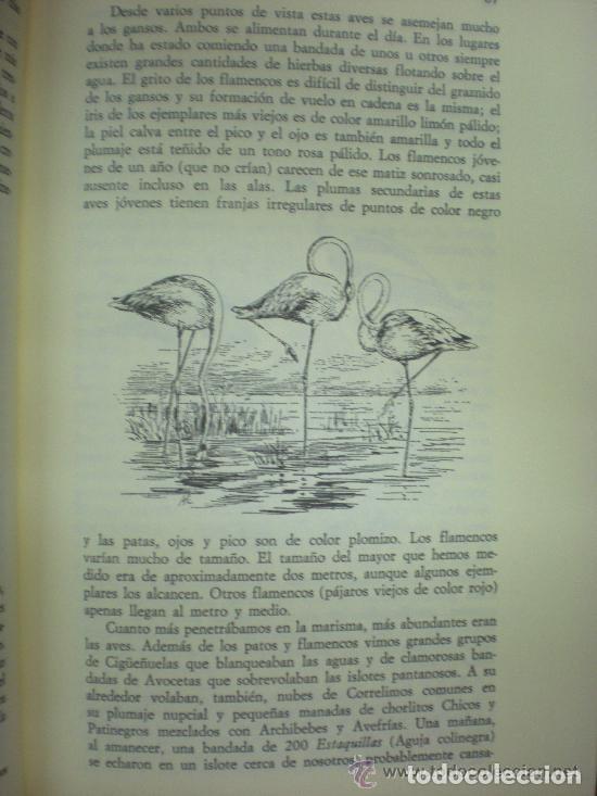 Libros: La España Agreste o Inexplorada - Foto 4 - 131567535