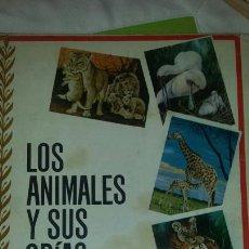 Libros: LOS ANIMALES Y SUS CRIAS 1966. Lote 130385162