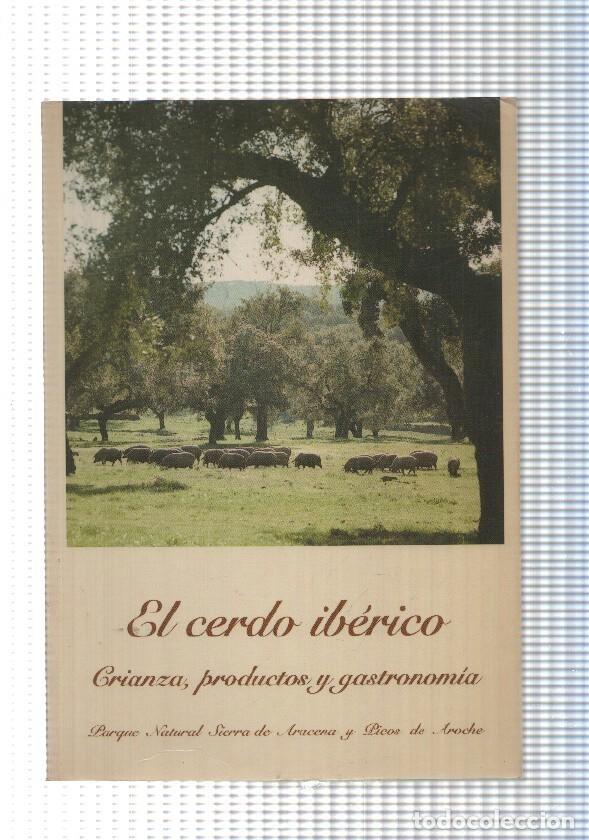 El cerdo Iberico. Crianza, productos y gastronomia segunda mano