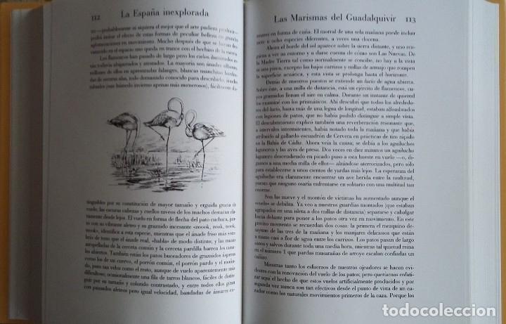 Libros: La España Agreste o Inexplorada - Foto 9 - 131567535