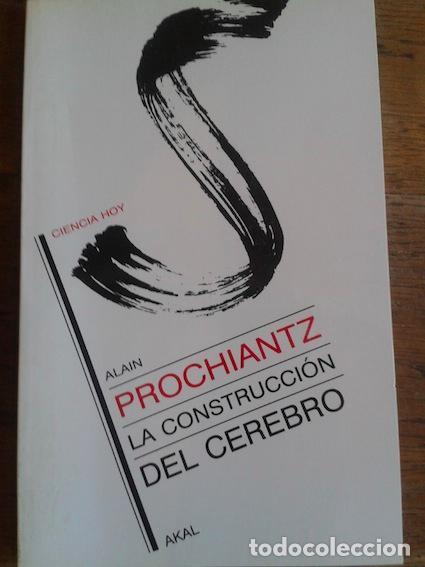 LA CONSTRUCCIÓN DEL CEREBRO - Prochiantz, Alain[Santa-Cruz, María Abelenda] tr., usado segunda mano
