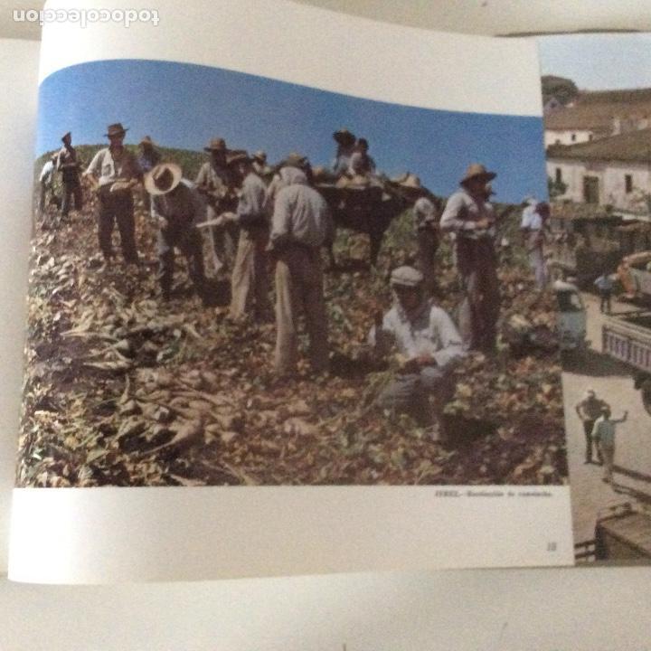 Libros: Ebro 50 años Compañís de Azúcares y Alcoholes Azucarera de Castilla Venta de Baños Palencia - Foto 6 - 149716102