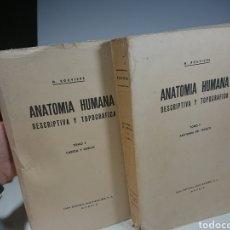 Libros: ANATOMÍA HUMANA DESCRIPTIVA Y TOPOGRÁFICA, TOMO I Y II - BAILLY-BAILLIERE, 1976 (MÁS DE 1.000 PÁG.). Lote 152590588
