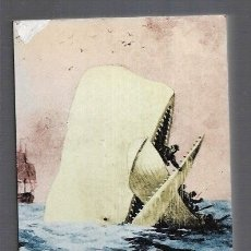 Libros: MOBY DICK. Lote 156448880