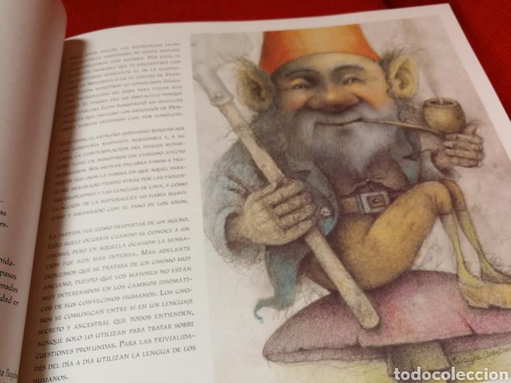 Libros: La Vida Cotidiana De Los Gnomos. Nigel Suckling,Wayne Ander - Foto 10 - 162761908