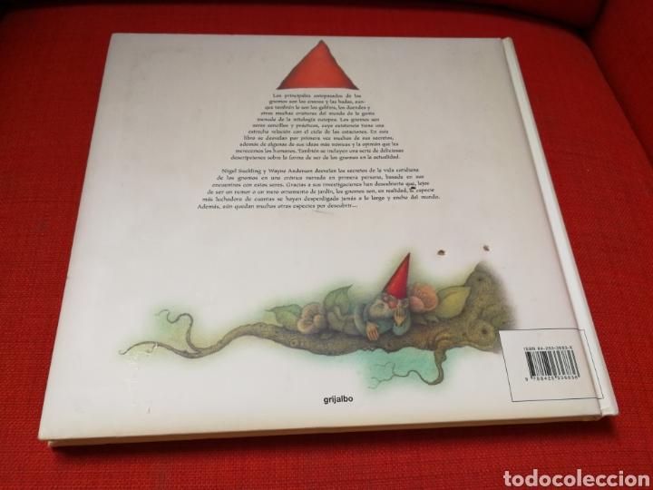 Libros: La Vida Cotidiana De Los Gnomos. Nigel Suckling,Wayne Ander - Foto 12 - 162761908