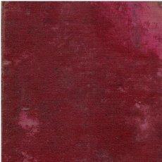 Libros: LA CIENCIA DE LA PINTURA - J. G. VIBERT. TRADUCCION DE MIGUEL DE TORO Y GOMEZ. Lote 163817949
