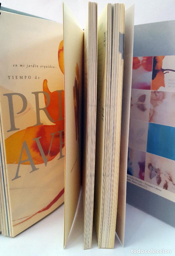 Libros: AGENDA 2005 RESISTIR AL TIEMPO. JUNTA DE ANDALUCIA - Foto 7 - 168961684