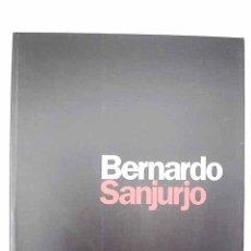 Livros em segunda mão: BERNARDO SANJURJO: DIEZ AÑOS DE PINTURA : PALACIO REVILLAGIGEDO, CENTRO INTERNACIONAL DE ARTE. Lote 173360525