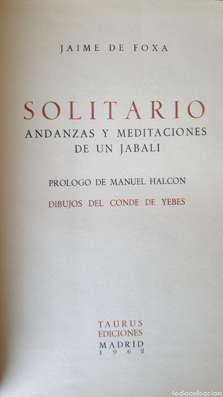 Libros: Solitario. Andanzas y meditaciones de un jabalí. Jaime de Foxá. Caza - Foto 3 - 194694250