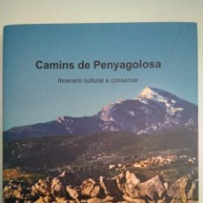 Libros: CAMINOS DE PENYAGOLOSA. ITINERARIO CULTURAL A CONSERVAR. ÀLVAR MONFERRER MONFORT. DIP CASTELLÓN 2016. Lote 176195784
